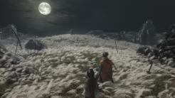 Quelle: Activision - Sekiro: Shadows Die Twice - Erinnert etwas an das Finale von Dark Souls 3.