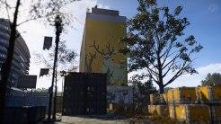 Tom Clancys The Division 2 - Stimmige Szenerie mit Hirsch Mural und Geheimbotschaft.