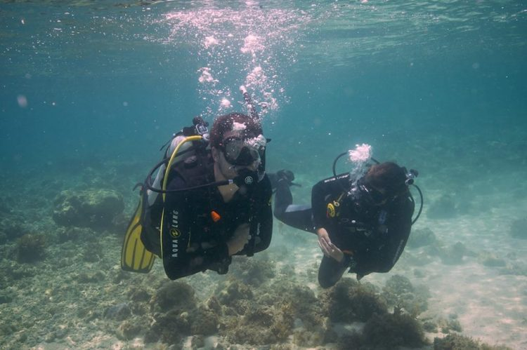 When And Why Should You Do A Scuba Refresher Course