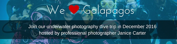 Join_our_trip_to_galapagos