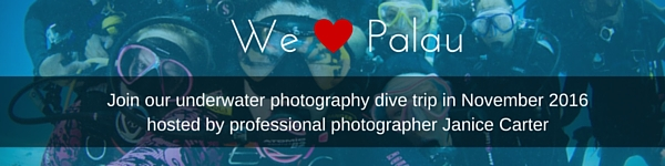 Palau_in_content_banner
