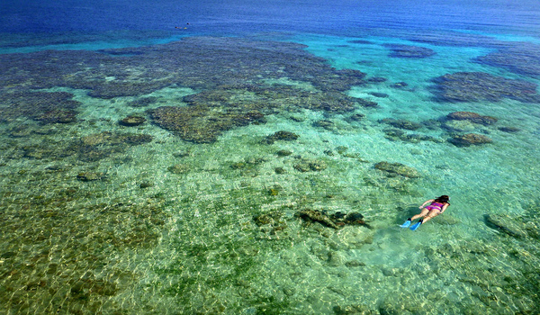 Snorkeling_and_diving_in_utila