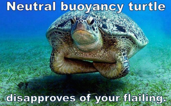 buoyancy ninja turtle