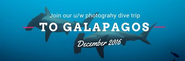 Photo_trip_banner_galapagos