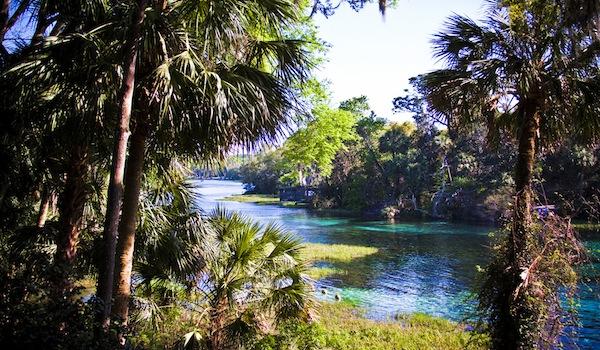 rainbow river florida