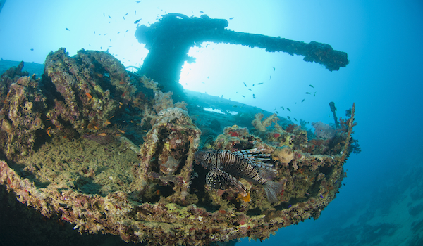 ship wreck photography red sea copy
