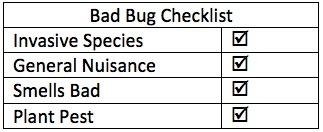 Bad Bug Checklist-Upload
