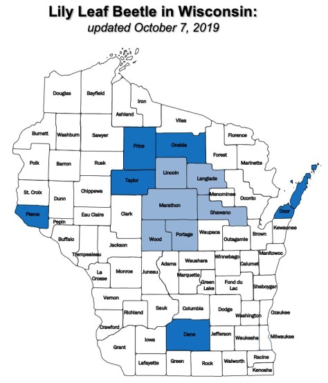 Wisconsin map showing counties with known lily leaf beetle activity