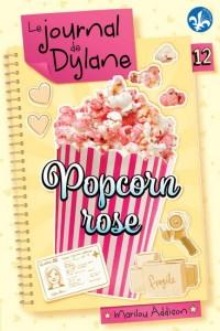 journal de dylane 12