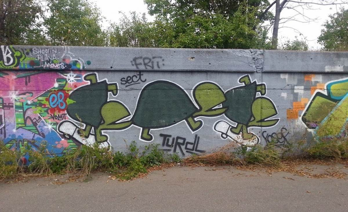 Turtle art in Detroit