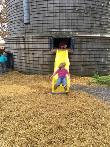 Does life get better than sliding out of a silo? Midwest fun at it's best!