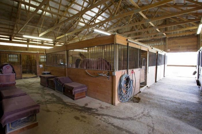 Chatham Stables indoor stalls