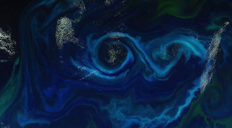 Oceans Manage The World's CO2