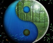 yin and yang plants on earth and in ocean Mother Nature