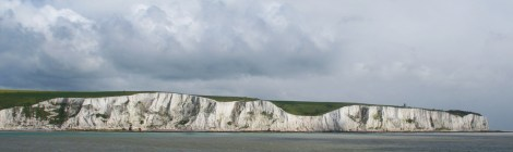 Origin Of White Cliffs Of Dover Phytoplankton Ehux Genome Sequenced