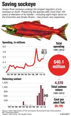 idaho salmon cost