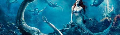 Mermaid Report - Pacific Pasture Reclamation Provides Farm Jobs For A Billion Fish