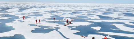 Warming Arctic Ocean Is Blooming More Than Ever