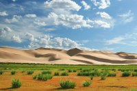 Global Greening, more grass growing here in the Gobi desert means less dust blowing.