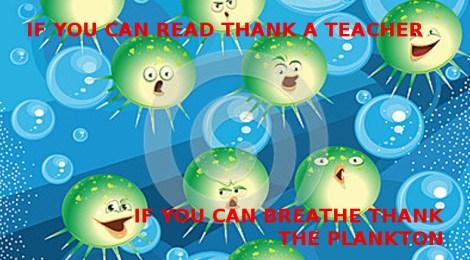 thank the plankton