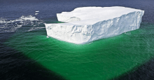 icebergs turn ocean pastures green with plankton