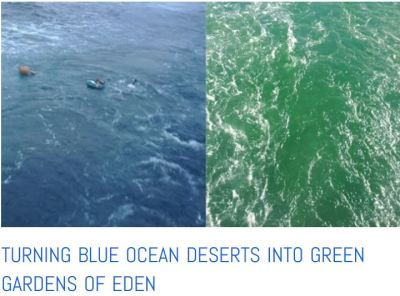 restored ocean pasture blue to green