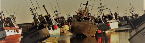 alaska salmon fleet hard aground