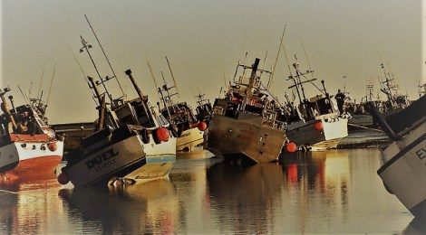 alaska salmon fleet hard aground