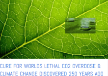 Cure for CO2 Overdose discovered 250 years ago