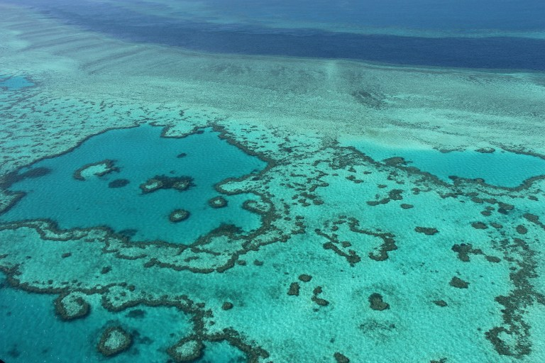 "This file photo taken on Nov 20, 2014 shows an aerial view of the Great Barrier Reef off the coast of the Whitsunday Islands, along the central coast of Queensland. (FILES) This file photo taken on November 20, 2014 shows an aerial view of the Great Barrier Reef off the coast of the Whitsunday Islands, along the central coast of Queensland. Coral reefs, that the Tara Pacific expedition go study on May 28, 2016 in the Pacific, are ""half animal half plant and risk a lot with climate change. / AFP PHOTO / Sarah Lai"