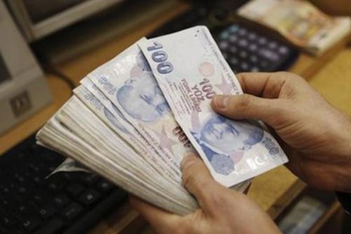 61566-INNERRESIZED600-500-Turkeys_economy1