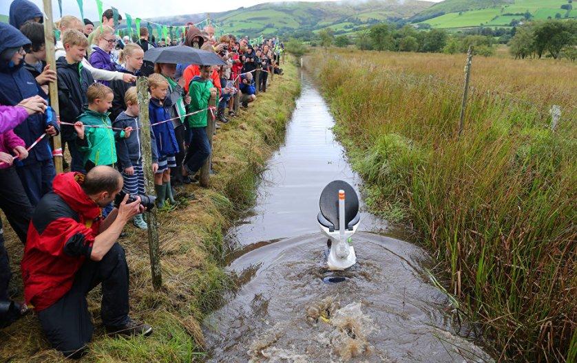 Действующий рекорд времени на чемпионате по нырянию в болото - 1 мин 22,56 секунды - установлен в 2014 году.