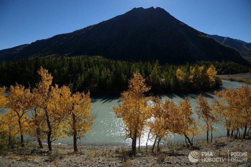 Река Чуя дополняет осеннюю палитру бирюзовыми красками водной глади.