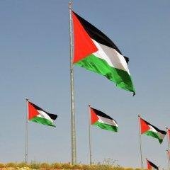 Палестина ждет Медведева