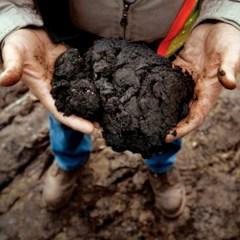 Доказана главная опасность добычи сланцевой нефти