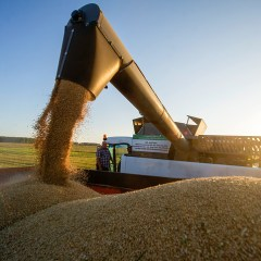 Venezuela to sign agreement with Russia on wheat deliveries