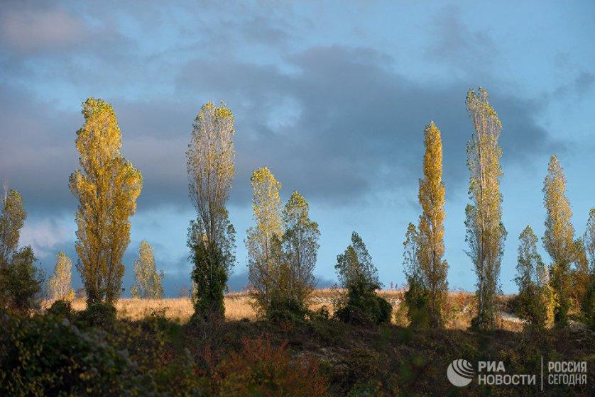 В окрестностях поселка Научный Бахчисарайского района.