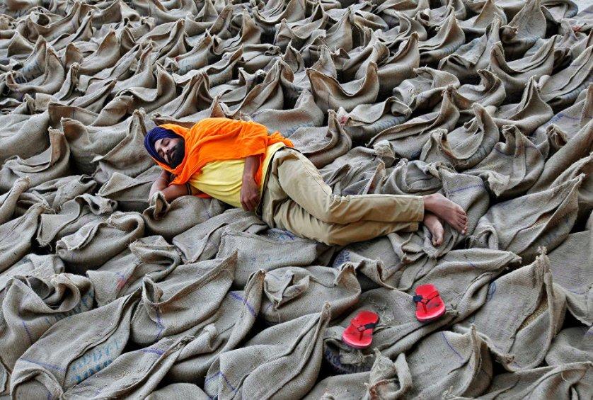 Фермер отдыхает на мешках с рисовой крупой на рынке в Чандигархе, Индия