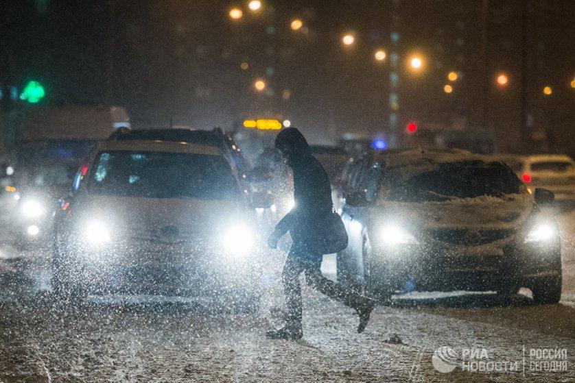 За сутки в Москве выпало 20% месячной нормы осадков.