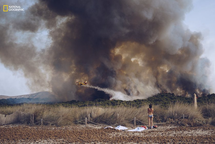"Работа фотографа Sergej Chursyn ""Пожар на пляже""."