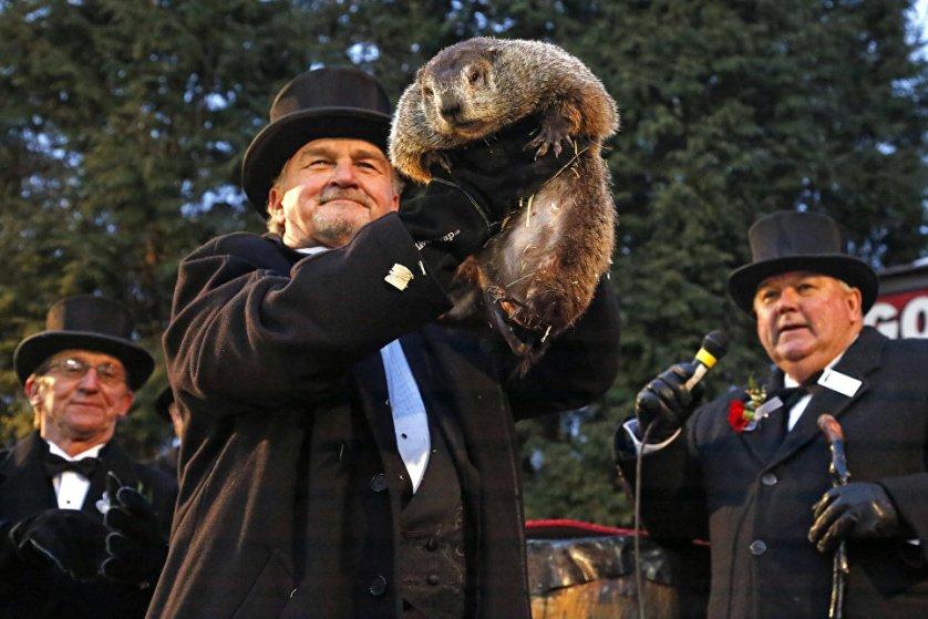 Знаменитый американский сурок Фил из пенсильванского города Панксатони предсказал еще шесть недель зимы.
