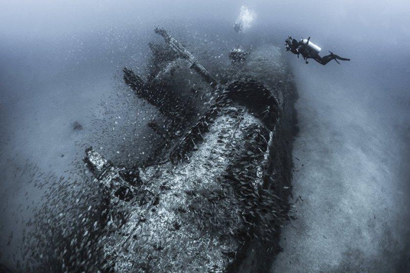 """Призер категории """"Затонувшие корабли"""": снимок """"Поймав историю"""" фотографа из США Тани Хоупперманс."""