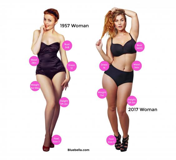 bluebella-average-sized-woman-1957-2017-how-womens-bodies-have-changed-over-last-60-years-