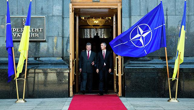 «Мозговой центр Трампа»: откройте дверь в НАТО для Грузии и Украины