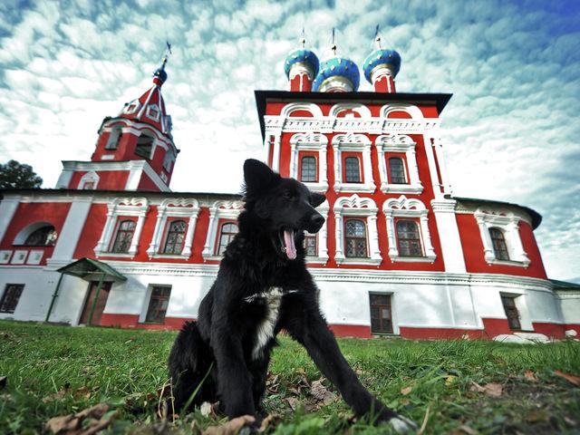 Поселения на месте угличского кремля существовали с начала нашей эры. Город – рай для любителей традиционной русской архитектуры.
