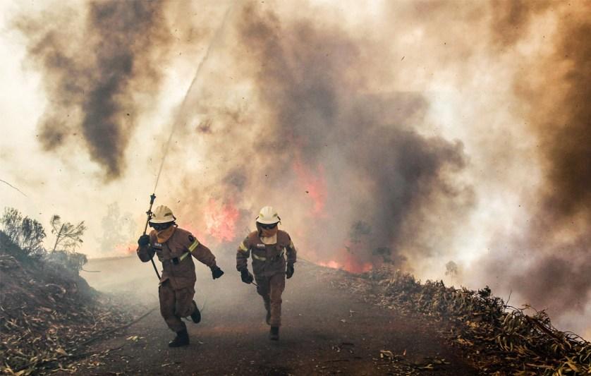 В борьбе со стихией были задействованы более 1600 пожарных и 190 единиц спецтехники