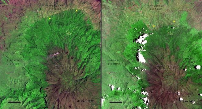 С 1970-х годов НАСА начало использовать спутниковые снимки, чтобы документировать вырубку лесов в некоторых национальных парках мира. Вот, например, Национальный парк Маунт-Элгон в Уганде в 1973 году и в 2005 году. © NASA