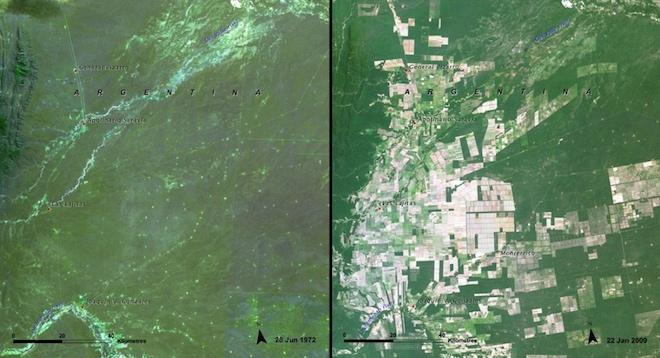 Вырубка леса в Сальте (Аргентина) очевидна на этой паре фотографий от 1972 и 2009 годов. © NASA