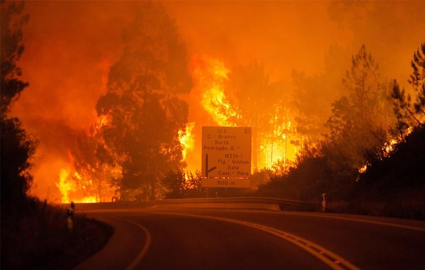 Половина жертв погибли в огне в собственных машинах на дороге, соединяющей города Фигейро-душ-Виньюш и Кастаньера-де-Пера, - примерно в 200 км к северу от Лиссабона