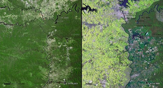 Вырубка также не прошла бесследно для Южноамериканского атлантического леса в Парагвае. Вот как он выглядел в 1973 и 2008 годах. © NASA